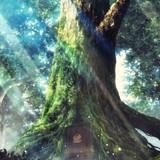 「異世界食堂」キービジュアル
