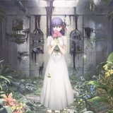 「劇場版 Fate/stay night[Heaven's Feel]Ⅰ.presage flower」キービジュアル
