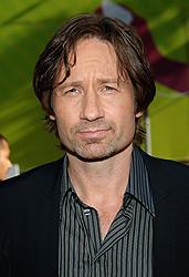 「カリフォルニケーション」には セックス&ドラッグ中毒の小説家役で出演