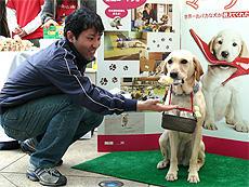 """プレゼントを手渡しならぬ""""口渡し""""するユウちゃん「マーリー 世界一おバカな犬が教えてくれたこと」"""
