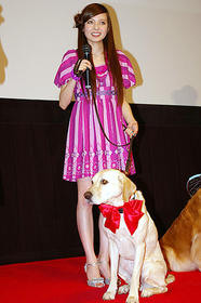 愛犬家は感涙すること間違いなし「マーリー 世界一おバカな犬が教えてくれたこと」