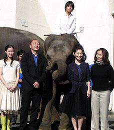 象にまたがった柳楽と出演者ら (前列左より)蒼井優、高橋克実、常盤貴子、倍賞美津子「星になった少年」
