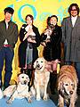田中麗奈、犬に囲まれて「楽しい」舞台挨拶。「犬と私の10の約束」完成