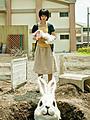 満島ひかり&香川照之、「ラビット・ホラー3D」でダブル主演