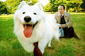 「犬飼」なのに犬が大の苦手!「犬飼さんちの犬」