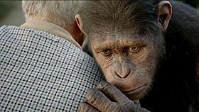 動物愛護団体PETAからお墨付きをもらったCGのサル「猿の惑星」