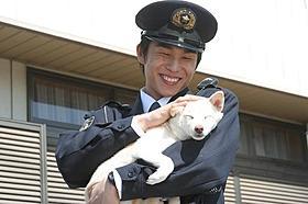 犬との相性もバッチリ「犬のおまわりさん てのひらワンコ3D」