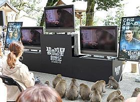 「猿の惑星」新作上映会を楽しむサルと参加者たち「猿の惑星」