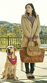 「LOVE まさお君が行く!」で香取慎吾と共演した広末涼子「LOVE まさお君が行く!」