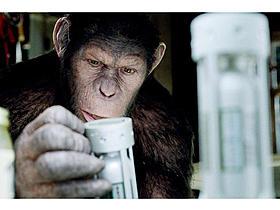 昨夏全米で大ヒットした「猿の惑星:創世記(ジェネシス)」「猿の惑星」