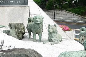 特別展示されるタロ・ジロ像「南極物語」