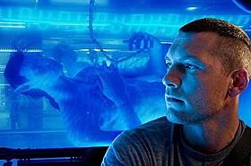 米フロリダのディズニーワールドに登場「アバター(2009)」