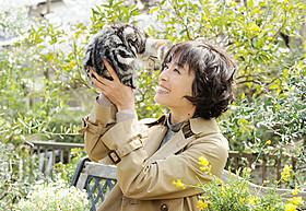 ドラマ「グーグーだって猫である」 に主演する宮沢りえ「グーグーだって猫である」