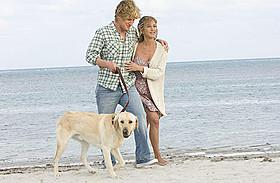 テレビシリーズとして続編が制作される 「マーリー 世界一おバカな犬が教えてくれたこと」「マーリー 世界一おバカな犬が教えてくれたこと」