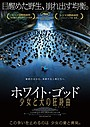 カンヌある視点部門グランプリ&パルムドッグ賞受賞作「ホワイト・ゴッド」11月公開