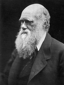 「進化論」で知られるチャールズ・ダーウィン「トラフィック」