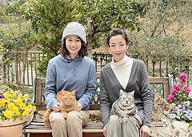 「グーグーだって猫である2」で共演する 前田敦子と宮沢りえ「グーグーだって猫である」
