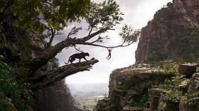 ディズニー実写版「ジャングル・ブック」場面写真「ジャングル・ブック」