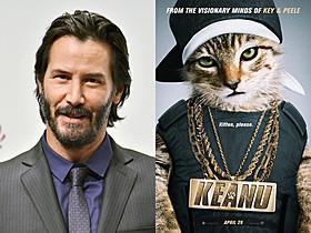 """小猫""""キアヌ""""をめぐる大騒動を描くアクションコメディ「ジョン・ウィック」"""