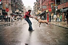 独自のスタイルで街を切り取る写真家たち「フォトグラファーズ・イン・ニューヨーク」