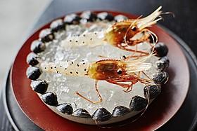 「ノーマ」日本期間限定店出店に密着「レストラン」