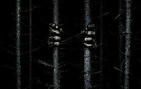 """森の中に""""何か""""が潜む……「サプライズ」"""