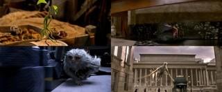 ボウトラックル(写真左上)は主人公と仲よし?「ファンタスティック・ビーストと魔法使いの旅」