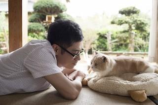 伊藤淳史とネコのシナモン「映画 ビリギャル」