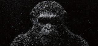 地球の支配者となるのは……「猿の惑星」