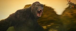 30メートル超のキングコングが!「キングコング 髑髏島の巨神」