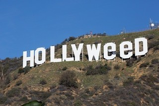 「HOLLYWOOD」が「HOLLYWeeD」に