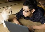 仕事中も晩酌タイムも…いつも猫と一緒!実写「ねこあつめの家」予告編