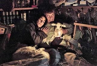ミルク運びの男と、美しい花嫁の愛の逃避行「アンダーグラウンド(1995)」