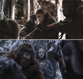 シーザーは愛する者のために戦場へ・・・!「猿の惑星:聖戦記(グレート・ウォー)」
