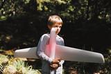 チャーリーとパパの飛行機