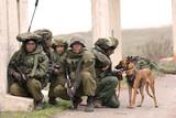ボーフォート レバノンからの撤退