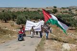 ビリン・闘いの村 パレスチナの非暴力抵抗