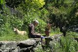 喜びは創りだすもの ターシャ・テューダー四季の庭