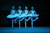ワールドクラシック@シネマ2011 バレエ「白鳥の湖」 ボリショイ・バレエ