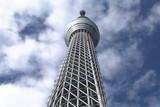劇場版 東京スカイツリー 世界一のひみつ