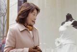燦燦 さんさん