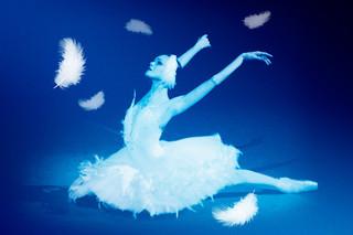 ロパートキナ 孤高の白鳥