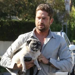 ジェラルド・バトラー&愛犬ロリータ(パグ)