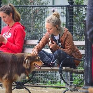アマンダ・セイフライド&愛犬フィン(オーストラリアン・シェパード)