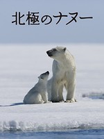 北極のナヌー