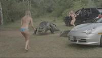 アナコンダ vs. 殺人クロコダイル