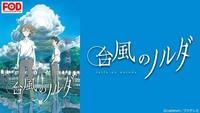台風のノルダ