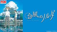 台風のノルダ(FOD)