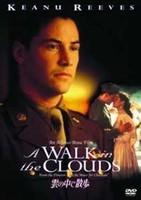 雲の中で散歩