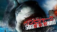 ゾンビシャーク 感染鮫